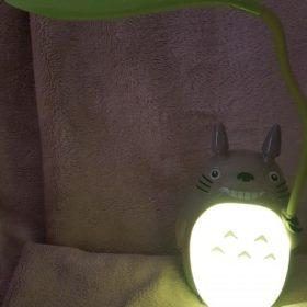 Totoro Lamp photo review